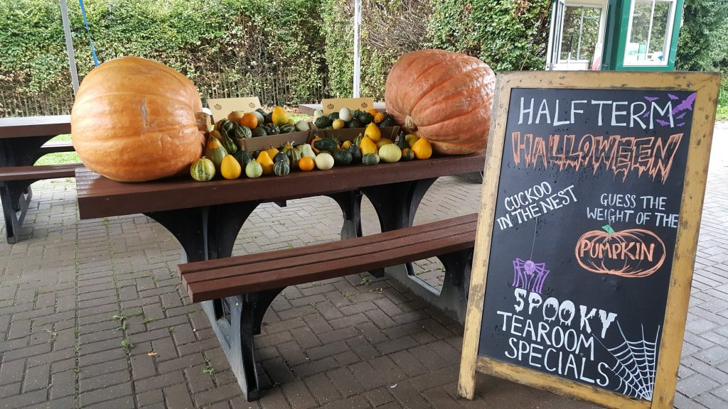 October half term places to go